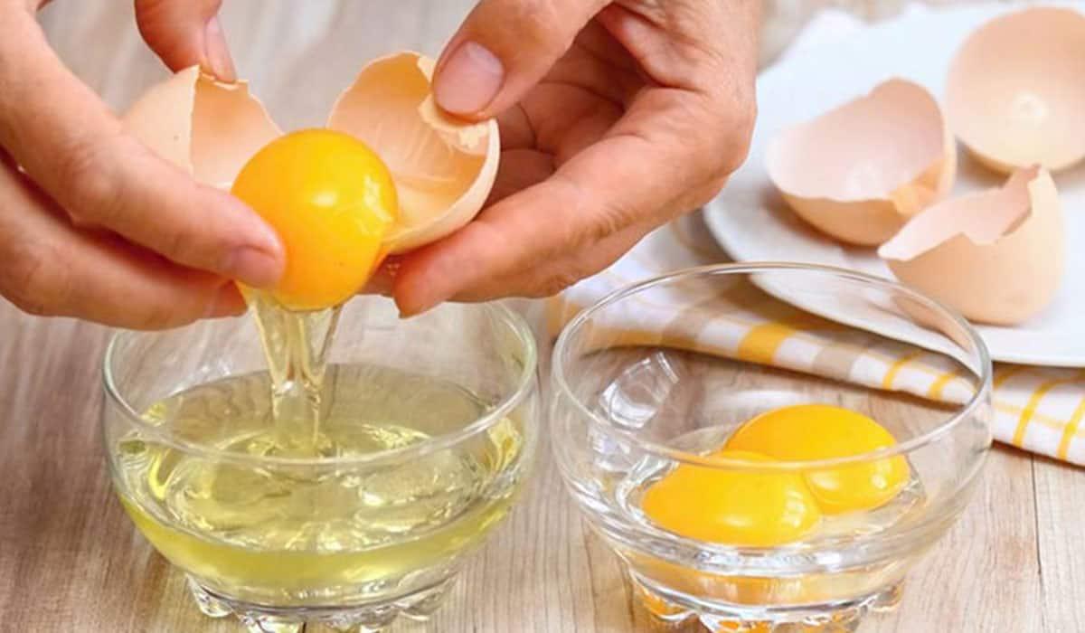 أسرار وخفايا فوائد البيض للشعر